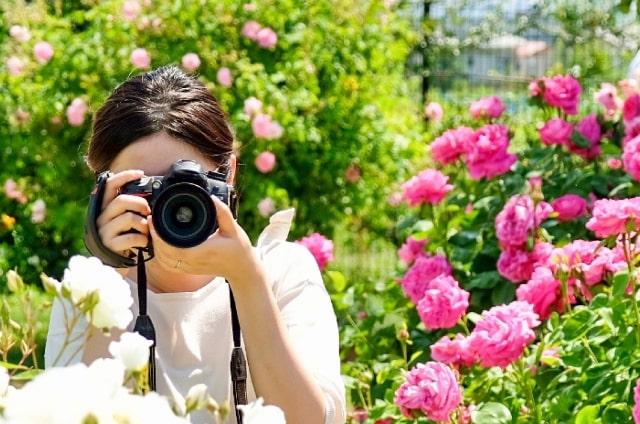 【個人で稼げる副業】カメラマン(写真を販売する)
